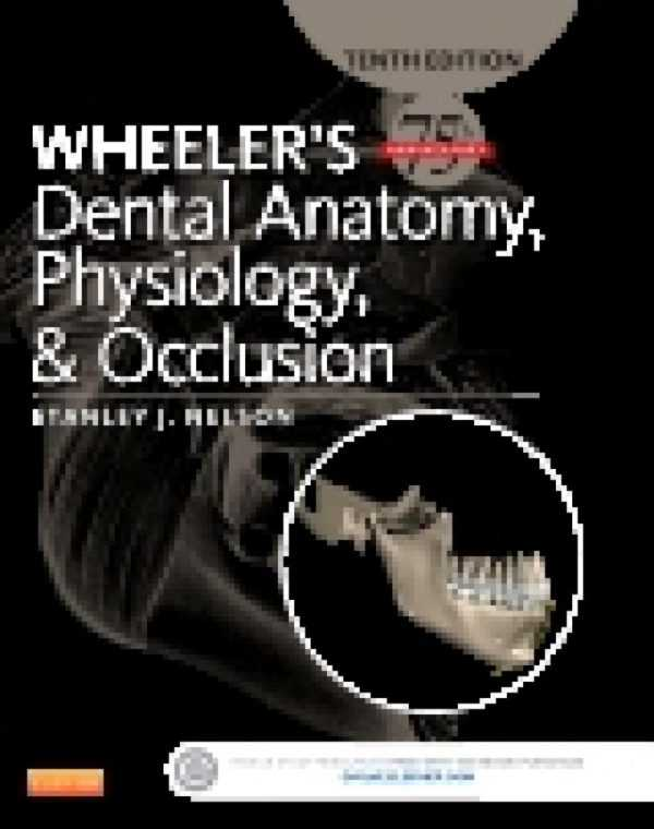 WHEELER�S DENTAL ANATOMY PHYSIOLOGY & OCCLUSION