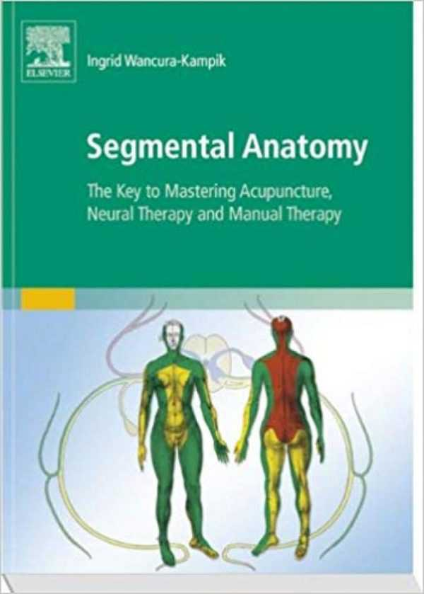 SEGMENTAL ANATOMY