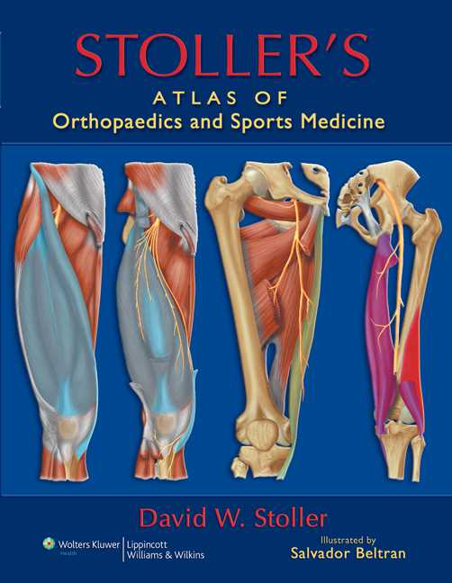 Stoller's Atlas of Orthopaedics and Sports Medicine