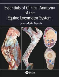 Essentials of Clinical Anatomy of the Equine Locomotor System